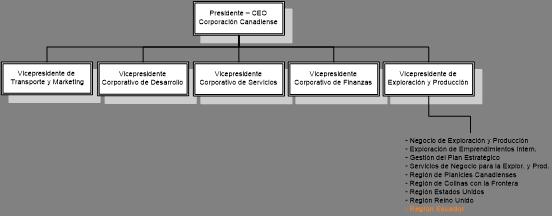 Dimensiones De Análisis Organizacional Caso En La Industria